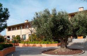 http://oferplan-imagenes.diariovasco.com/sized/images/hotel-alhama-estancia-cena-descuento-201511271-300x196.jpg