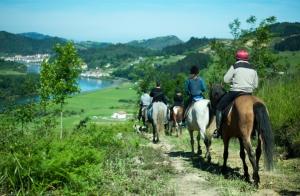 Hora y media de paseo a caballo + pintxo pote