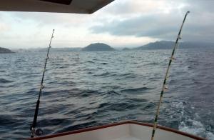 Salida de pesca en barco desde Pasaia